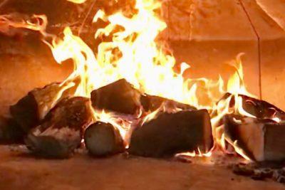 kiln dried pizza logs