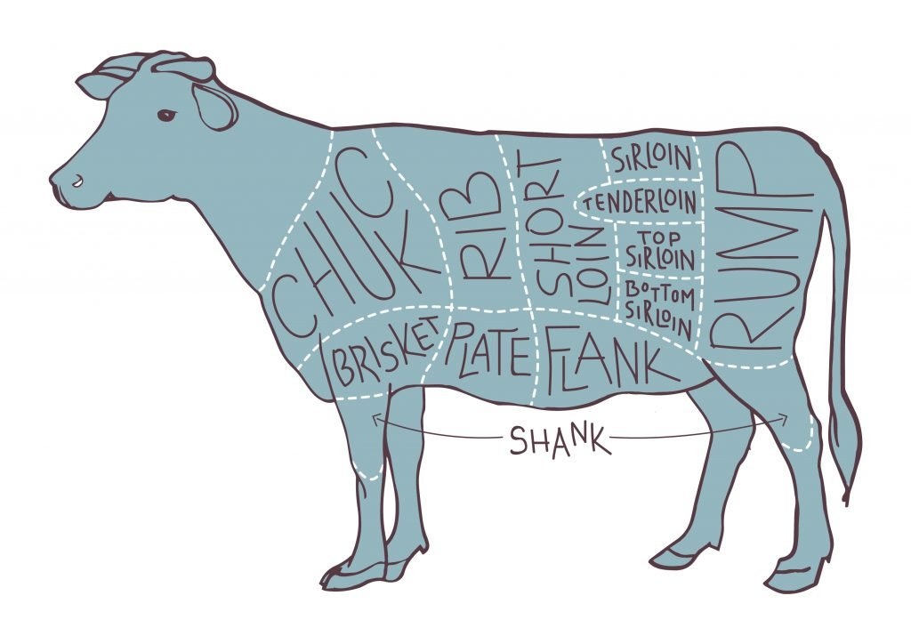 An illustration of a cow showing all the different cuts from which BBQ steaks come from
