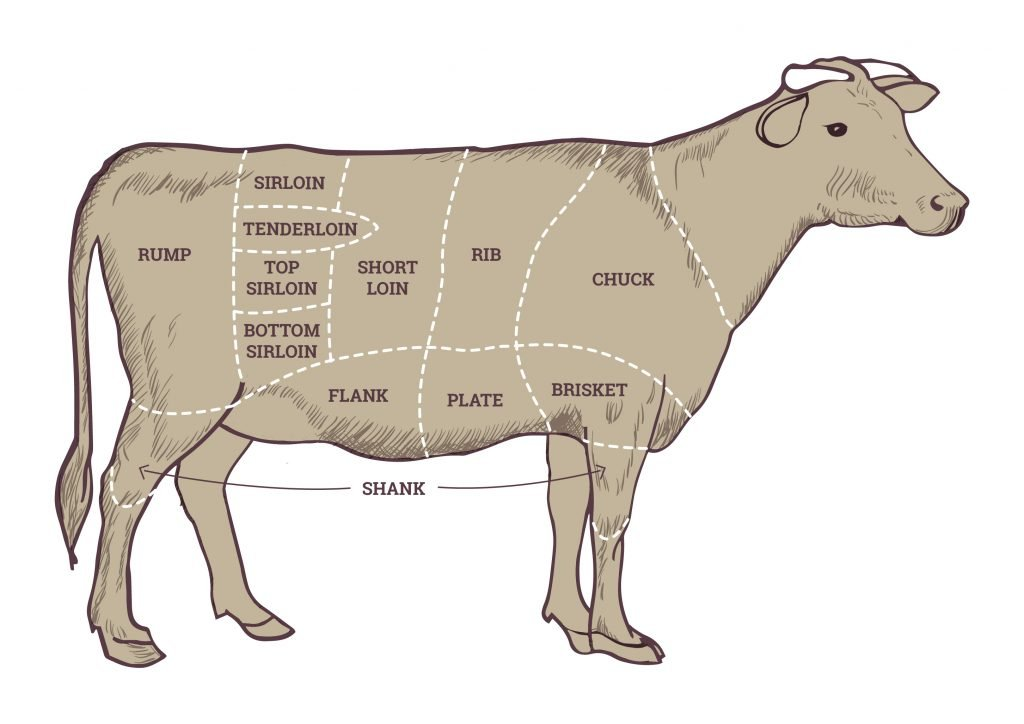 A diagram of a cow's anatomy indicating where the different barbecue steaks come form